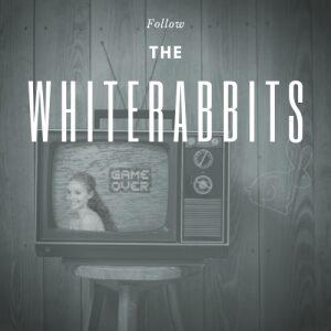 Follow the whiterabbits jeudi thursday 22h 10pm