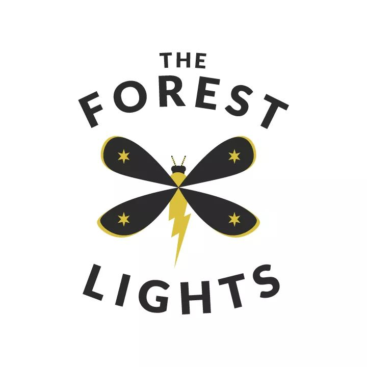 The Forest Lights